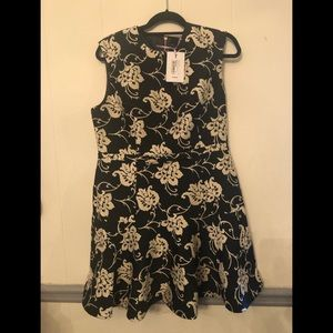 Ted Baker Ornate Paisley Peplum Hem Dress